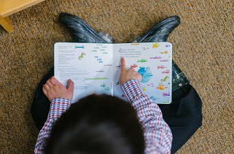 httpswww.pexels.comphotophoto-of-a-boy-reading-book-1250722